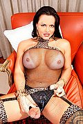 Vienna Trans Joanna 327 9975234 foto hot 13